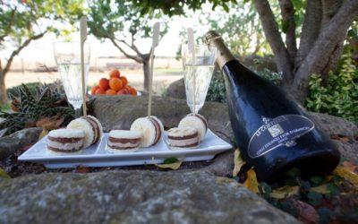 Contest DeGustiViniEuganei: aperitivo con Fior D'Arancio spumante DOCG